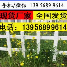 漳州市云霄县草坪栏杆+花草护栏,美好乡村需求量,全国图片