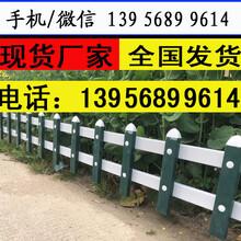 丽水龙泉草坪围栏多少钱每米易于安装图片
