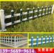 湖北省孝感市pvc栏杆绿化栅栏厂安装说明书,护栏多样化