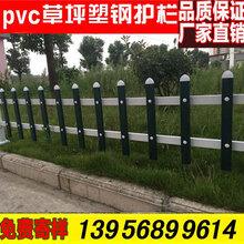 池州东至塑料栏杆花草护栏配件立柱可赠送图片