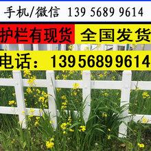 安徽省黄山pvc栏杆pvc绿化栅栏,维护成本低图片