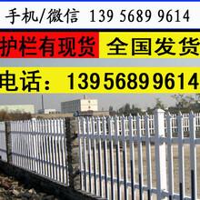 駐馬店西平縣pvc護欄綠化帶護欄圖片