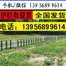 表面光洁黄冈市红安县花草栅栏塑料护栏图片