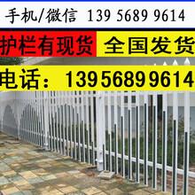 塑鋼護欄免費設計周口市鹿邑花池護欄花園竹柵欄圖片