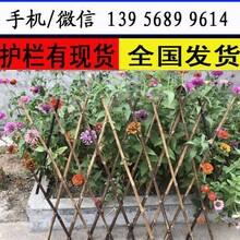 塑钢护栏免费设计十堰市丹江口市pvc护栏/绿化栏杆图片