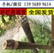 濮陽清豐庭院圍欄竹子籬笆竹柵欄