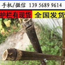 塑鋼護欄免費設計荊門市鐘祥市PVC草坪護欄花園塑鋼圍欄圖片