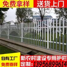 信息丽水市缙云县pvc草坪栏杆图片