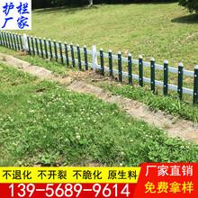 塑料建设台州市玉环县pvc绿化栏杆图片