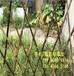 九江市庐山区pvc绿化栅栏变压器护栏厂商出售