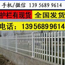 南通启东pvc塑钢护栏草坪绿化栅栏厂优游供货图片