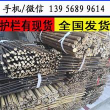 赣州瑞金花池护栏花园竹栅栏厂商出售图片