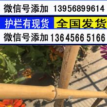 周口西华栅栏篱笆围栏竹杆竹子产量高图片