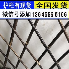 浙江杭州围栏户外庭院装饰护栏货到付款图片