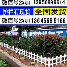 昌都丁青pvc塑钢围栏-草坪护栏生产厂家图片