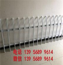 浙优游舟山pvc护栏pvc护栏效率高的图片