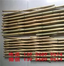 常德武陵伸缩竹栅栏竹子围栏厂商出售图片