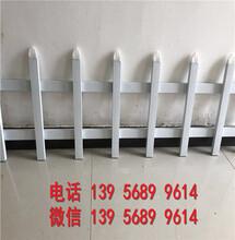 淮北杜集园林围栏园林栅栏款式多样化,欢迎下单图片