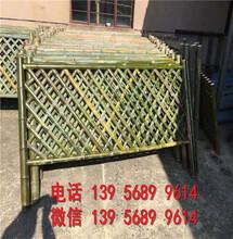 周口西华竹竿篱笆装饰爬藤架厂商出售图片