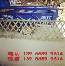 鹰潭贵溪塑料绿化带小室外户外护栏图片报价图片