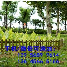 舒城县pvc护栏送立柱塑钢PVC草坪护栏,。。。可以买现货图片