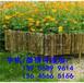 五峰土家族自治县pvc围墙栅栏pvc围墙栏杆欢迎出售
