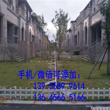 宁德福安工厂围栏工厂栅栏30,40,50公分图片