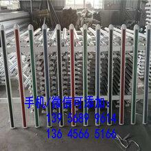 蒙山县pvc护栏送立柱塑钢PVC草坪护栏,。。。不枯朽,不褪色,不腐蚀图片