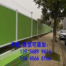 福鼎市防腐竹篱笆园艺拉网竹栅栏价格公道,量大更好图片