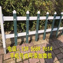 零陵區pvc綠化柵欄pvc綠化欄桿批發價格圖片