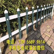 湘潭县竹篱笆护栏竹子护栏价格透明图片