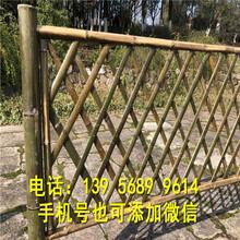 玉泉区竹篱笆栅栏庭院围栏护栏哪里买图片