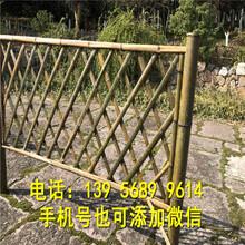 塑钢花园绿化带栏杆哪家买图片