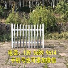 龙安区pvc塑钢护栏围栏栅栏花栏_直接厂家图片