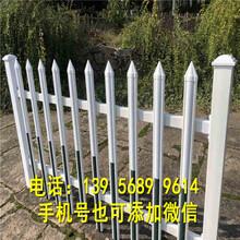 吉利区pvc塑钢栅栏pvc塑钢栏杆哪家好图片