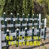 泉州金门县pvc绿化栅栏pvc绿化栏杆欢迎出售