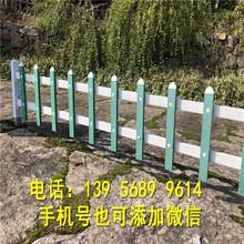 福建省户外花园护栏紫竹帘竹竿围墙装饰可以买现货图片