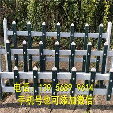 灌南县pvc绿化栅栏pvc绿化栏杆欢迎出售图片