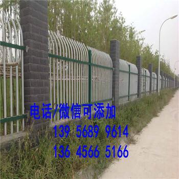 龙文区绿化栏栏 草坪