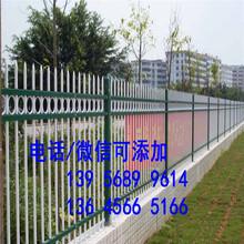 金水區綠化圍欄綠化柵欄價格透明圖片