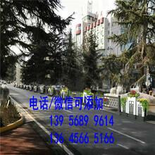 睢县锌钢草坪护栏围栏绿化铁艺栅栏市场报价图片
