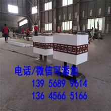 赵县竹篱笆绿化围墙塑钢围栏生产厂家图片
