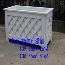 孟津縣PVC塑鋼護欄圍欄柵欄草坪護欄廠家圖片