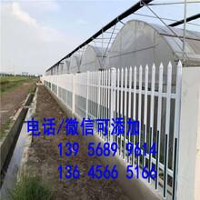 三山區pvc塑鋼護欄pvc塑鋼圍欄,圍墻護欄電力圍欄。。尋找護欄批發市場圖片