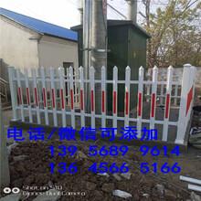 临汾洪洞pvc护栏草坪栏杆塑钢栅栏那个省钱图片