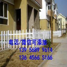 晋江市菜园栅栏围栏室外花园围栏庭院种类齐全/库存充足/图片