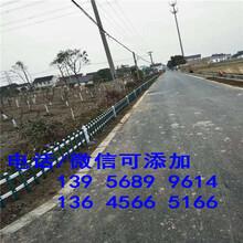 孟津县竹篱笆护栏竹子护栏能够买现货图片