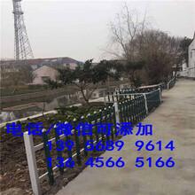 芜湖无为县人工假草皮平人造塑料地毯天台绿化装饰市场价格图片
