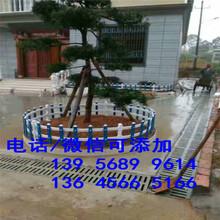 濉溪县小区围挡绿化草坪栅栏厂家出售?图片