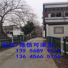 安庆市竹篱笆护栏毛竹围栏绿化环保安装简便